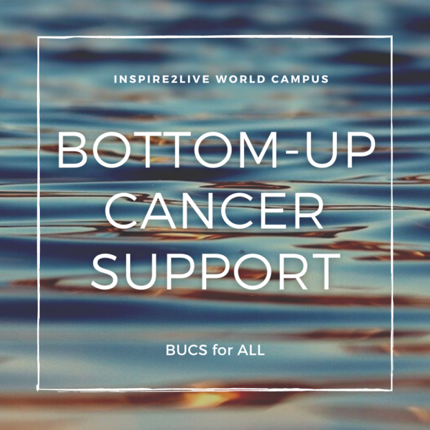Bottom-Up Cancer Support for All